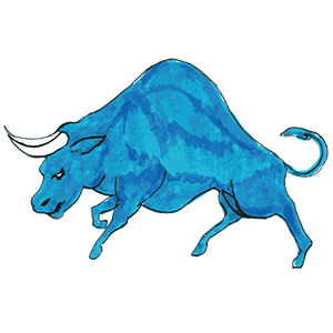 Let's master the meaning and use of Bull!